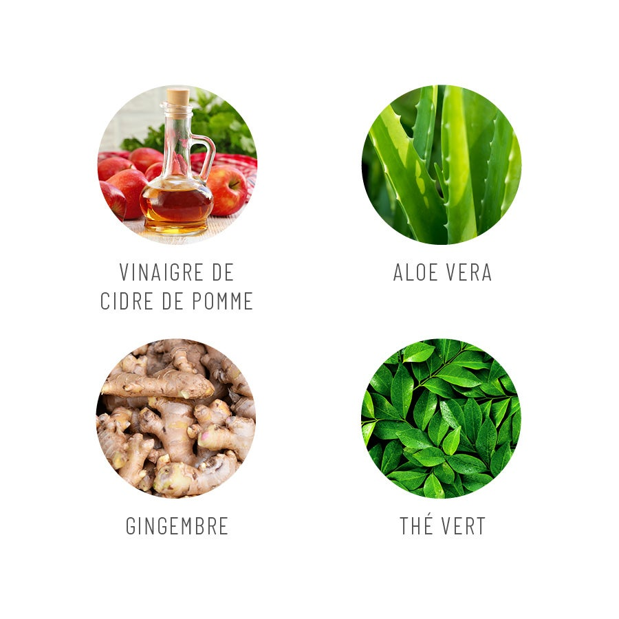 Ingrédients principaux du Cleanse It Works